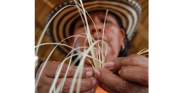 Freno a venta en Colombia de sombreros vueltiaos chinos  012921d9269